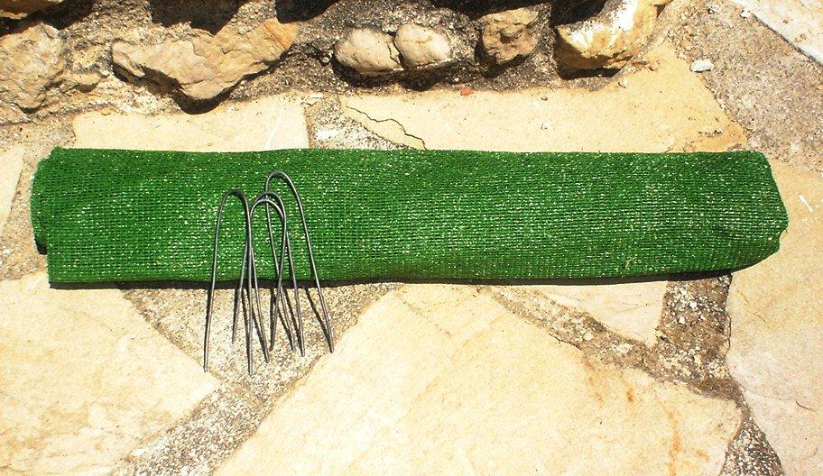 Brown Patch Magic Lawn Repair Kit Lawns In Spain Real